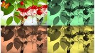 Laboratorio Scienza anticipa la primavera con un laboratorio interamente dedicato ai colori, all'arcobaleno e alla natura. L'appuntamento con esperimenti, giochi ed emozioni è per domenica 20 marzo alle ore 17:00all'EXMA […]