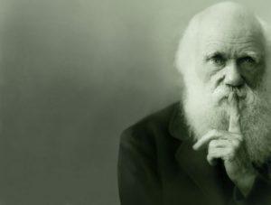 nel segno di darwin